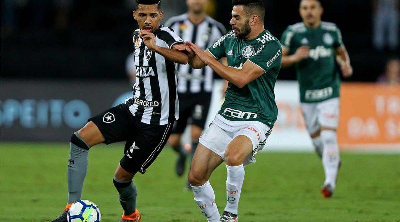 foto botafogo e palmeiras 4 2018 800x445 - Brasileirão: Botafogo empata com o Palmeiras