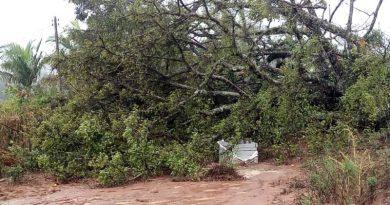 foto bombeiros estrada vicinal 390x205 - Estrada vicinal é liberada em Barbacena