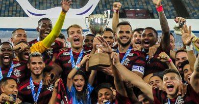foto flamengo taca rio 390x205 - Flamengo e Palmeiras concentram 24% da receita no Brasil