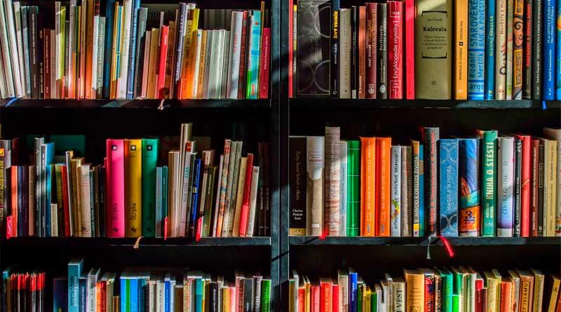 foto free livro cultura estudo - Literatura: Prêmio Jabuti 2019 divulga lista de finalistas