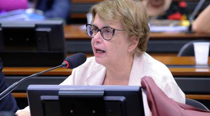 Margarida Salomão eleições